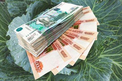e1434b560896 Займы в Смарт Кредит, срочные займы, заявка онлайн круглосуточно ...