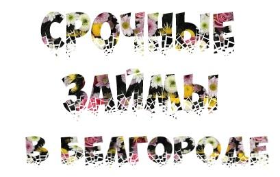 Срочные займы в Белгороде